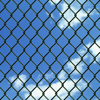 "Picture of Chain Fence 4' 1"" x 82' Green"