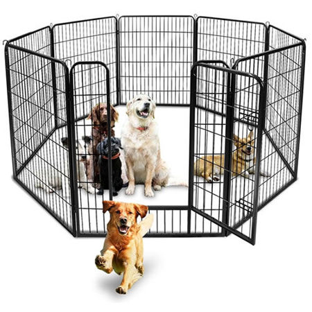 Picture for category CAGES / CRATES