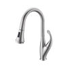 Picture of Kitchen Faucet with Pull Out Sprayer - Brushed Nickel